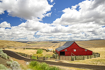 """Barn at Anderson Ranch (""""Since 1905""""), Highway 206, between Condon and Heppner in eastern Oregon."""