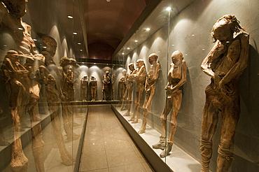 Mummies on display at El Museo De Las Momias (The Mummies' Museum), Guanajuato, Mexico.