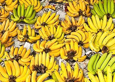 Bananas for sale in Pratu Chiang Mai market; Chiang Mai, Thailand.