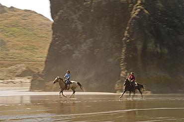 Horseback riding on the beach at the Myers Creek area of Pistol River State Park, Samuel H. Boardman State Scenic Corridor, Oregon Coast.