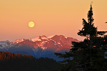 Full moon rising over North Cascades from Park Butte Trail, Mount Baker-Snoqualmie National Forest, Washington.