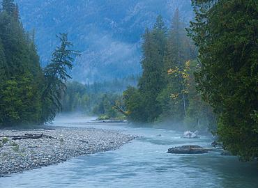Stehekin River with morning fog, Lake Chelan National Recreation Area, Cascade Mountains, Washington.