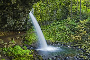 Hiker behind Ponytail Falls (aka Upper Horsetail Falls), Columbia River Gorge National Scenic Area, Oregon.