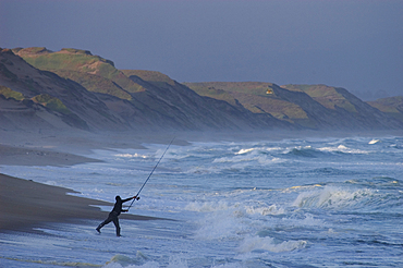 Fisherman casting into surf on beach at Marina Dunes State Park; Monterey County, California.