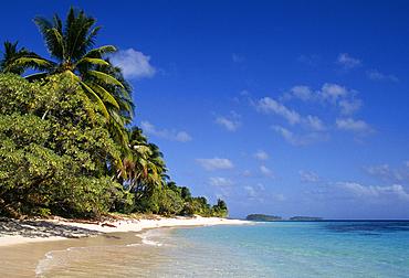 "Marshall Islands, Micronesia: Beach and palm trees on Calalin Island, a ""Picnic Island"" on Majuro Atoll.."