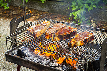 Chops on the barbecue. Navarre, Spain, Europe