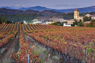 Vineyard in autumn and church. Monastery of Irache. Ayegui, Navarre, Spain, Europe