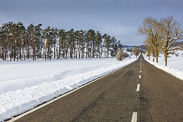 Trees and road in a snow-covered landscape. Urbasa-Andia Natural Park. Navarre, Spain, Europe