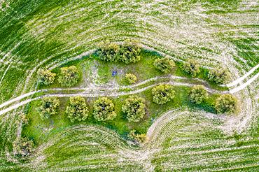 Agricultural aerial landscape, Tierra Estella, Navarre, Spain, Europe