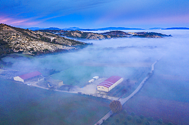 Agricultural area and fog. Aerial view. Ayegui area. Navarre, Spain, Europe