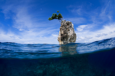 One Tree Rock, Boo Island, Misool, Raja Ampat, West Papua, Indonesia, Pacific Ocean
