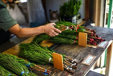 Woman sells herbs in street of Koyasan, Japan