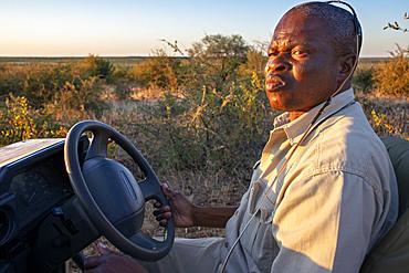 Guide of a safari vehicle at Mashatu game reserve, Botswana, Africa