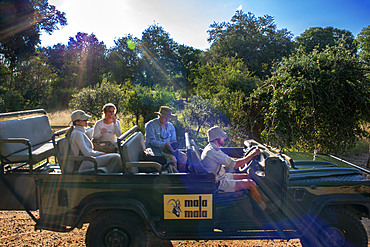 Safari car vehicle with tourists in Mala Mala Game Reserve Sabi Sand Park Kruger South Africa, Africa