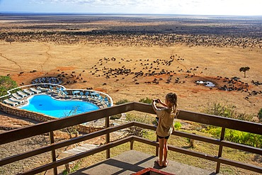 Tourist girl taking pictures of African buffalos Syncerus caffer herd drinking in front of Voi lodge, aerial view, Tsavo East National Park, Kenya
