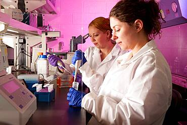Scientists conducting an experiment in a laboratory