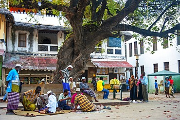 Kenya, Lamu Island. The open, shady square outside Lamu Fort Plaza Square near the island's administrative offices is used as a meeting point during the heat of the day.