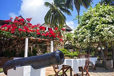 Nice houses and hotels in Shela beach in the south of Lamu island archipelago in Kenya