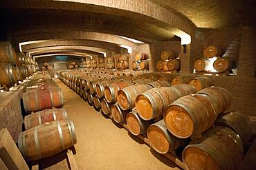 Barrels of Undurraga vineyards and winery in Talagante Chile