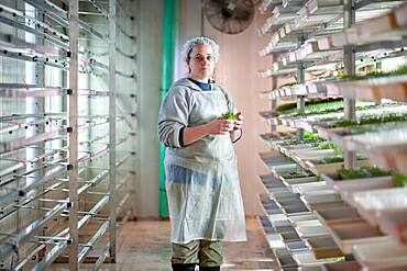 Woman growing sprouts in greenhouse