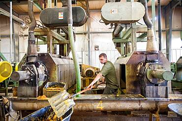 Man working at soybean oil plant