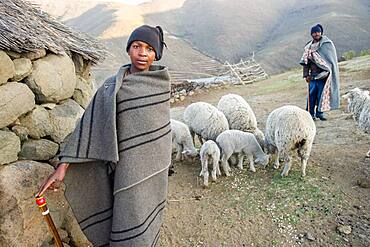 Young boy and a man with their sheep in their village in Lesotho, Africa