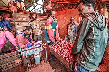 Addis Ababa, Ethiopia- Onions for sale at the Addis Mercato, the largest open air market in Africa.