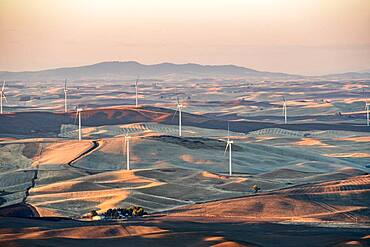 Views of the Palouse from Steptoe Butte