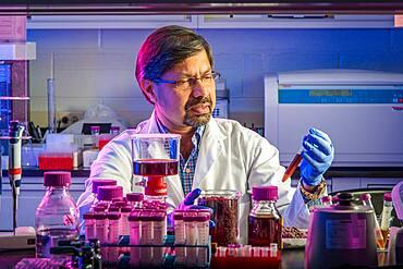 Scientist in laboratory with purple liquid