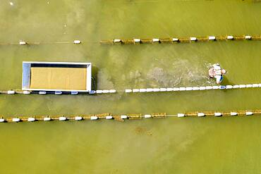 Aerial view of rows buoys marking farm grown oyster cages, Hoopers Island, Maryland.
