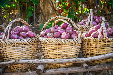 Woven baskets full of red onions at outdoor market,  Debre Berhan, Ethiopia