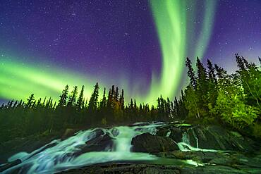 The Northern Lights over the waterfalls known as the Ramparts on the Cameron River east of Yellowknife, NWT, on September 8, 2019. The aspen trees are turning yellow on this September evening. This is looking northeast toward Perseus and Andromeda. M31 is at top centre.