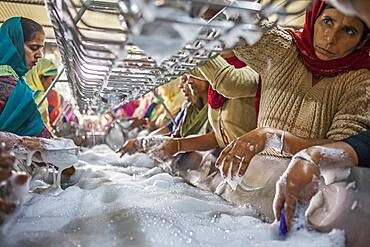 Volunteers cleaning dishes, Each day eat 60,000 - 80,000 pilgrims in Golden Temple, Golden temple, Amritsar, Punjab, India