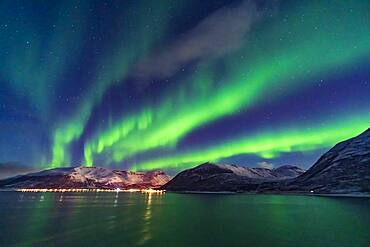A fine display of aurora in curtains across the north, October 19, 2019, observed from the upper Deck 9 of the ms Trollfjord on the southbound voyage north of Tromsø along the Norwegian coast. Illumination is partly from the waning gibbous Moon.