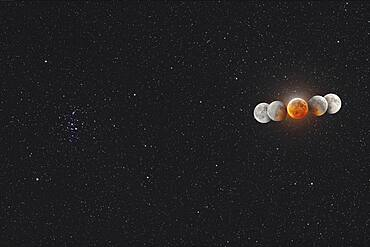 The Moon in total eclipse, on January 20, 2019, in a multiple exposure composite showing the Moon moving from right to left (west to east) through the Earth's umbral shadow.