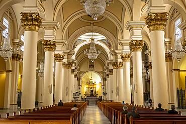 Catedral Primada de Colombia, Cathedral, Bogota, Colombia