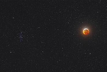 The Moon in mid-total eclipse, on January 20, 2019, with it shining beside the Beehive star cluster, Messier 44, in Cancer. This was the unique sight at this eclipse as it can happen only during total lunar eclipses that occur in late January. There was one on January 31, 2018 but the next will not be until 2037.