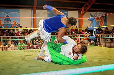 Lucha Libre. Combat between the Transvestite and the cholita Angela la Folclorista, wrestlers ,Sports center La Ceja, El Alto, La Paz, Bolivia