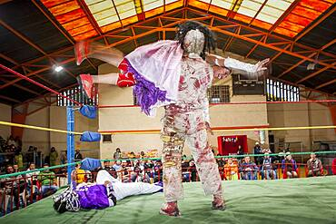 Lucha Libre. Angela la Simpatica and La Momia fighting, males and cholitas females wrestlers in combat, Sports center La Ceja, El Alto, La Paz, Bolivia