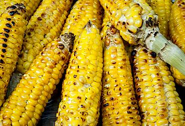 roasted corn, typical Colombian gastronomy