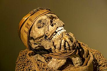 Muisca Mummy, in Gold museum, Museo del Oro, Bogota, Colombia, America