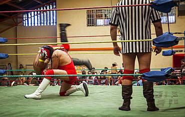 Lucha Libre. Wrestlers in combat, and referee, Sports center La Ceja, El Alto, La Paz, Bolivia