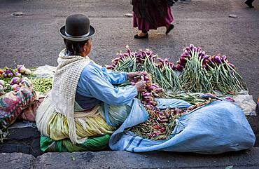 Mercado Rodriguez (Rodriguez market), La Paz, Bolivia