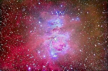 The Orion Nebula, M42 and M43, with surrounding associated nebula and star clusters, such as the Running Man Nebula above (NGC 1975) and blue star cluster above it, NGC 1981.