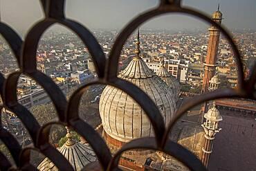 Minaret and domes of Jama Masjid mosque, Delhi, India