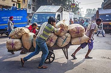 Carriers distributing the goods in the market, Chandni Chowk, Old Delhi, India