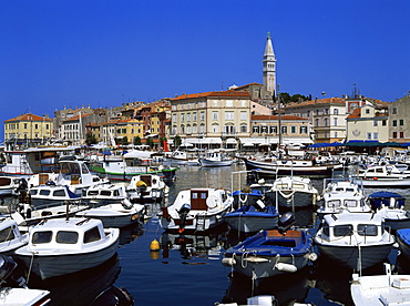 View of town over harbour, Rovinj, Istria district, Croatia, Europe