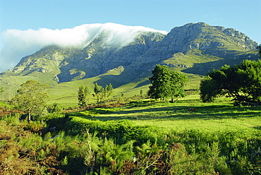 The Montagu and Outeniqua passes, Western Cape Province, South Africa, Africa