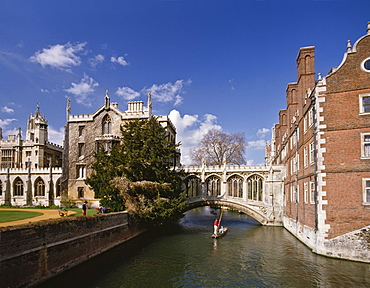 Punting under the Bridge of Sighs on the River Cam at St. John's College, Cambridge, Cambridgeshire, England, United Kingdom, Europe