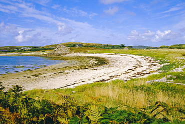Bryner, Isles of Scilly, England, UK